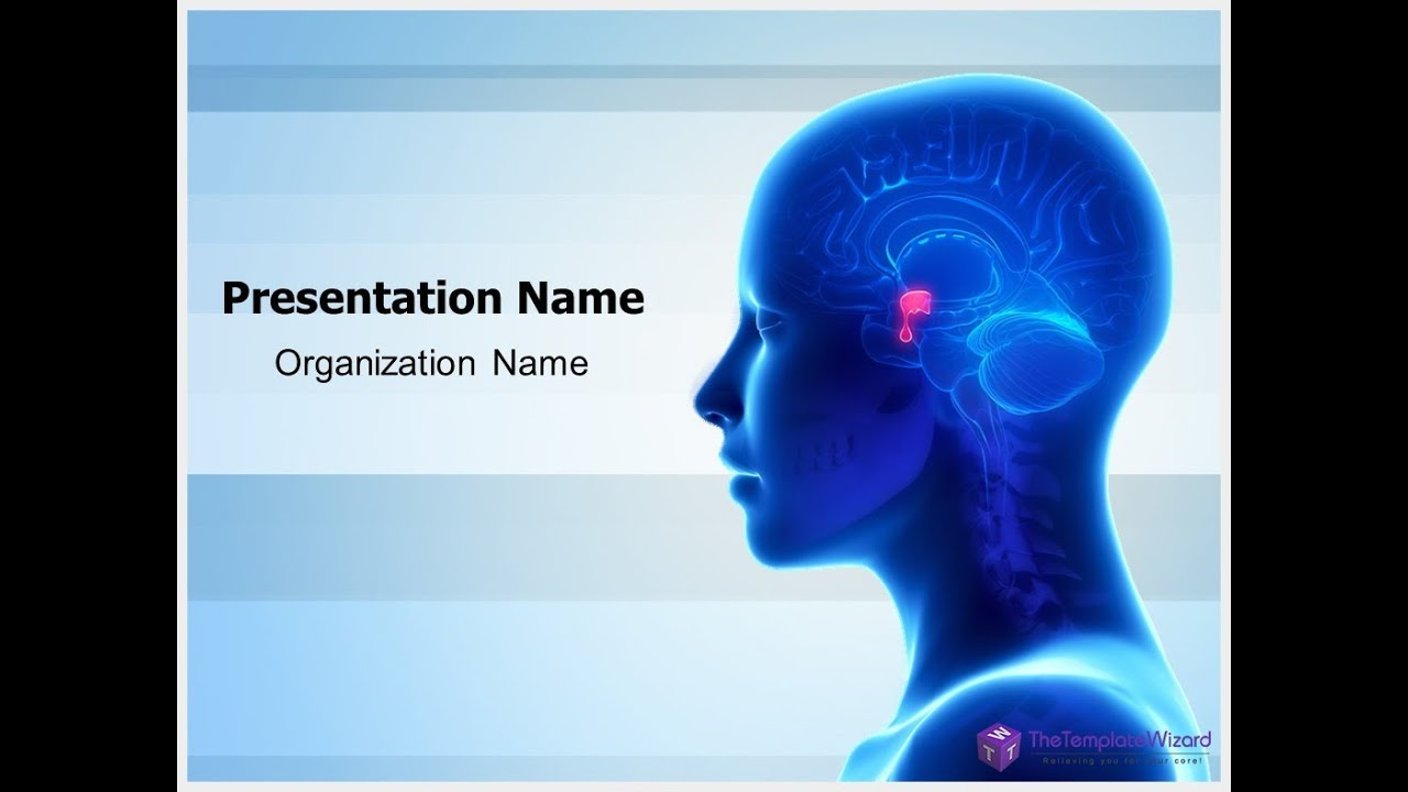 Brain Pituitary Gland PowerPoint Template - TheTemplateWizard.com ...