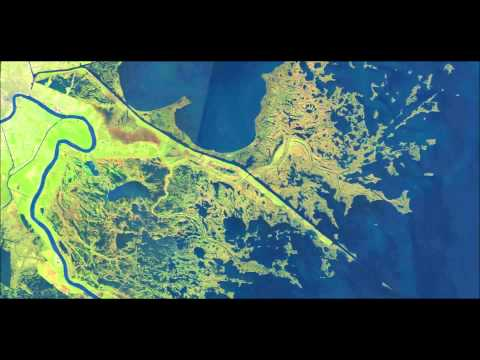 Freshwater Diversion - Effects on Delacroix Estuary