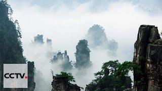 Вид на Чжанцзяцзе, где был снят фильм