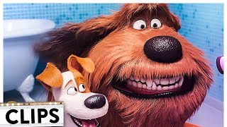 PETS 2 Alle Filmclips & Trailer