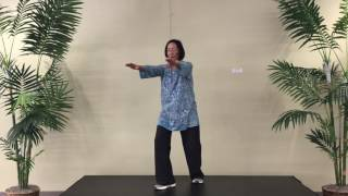 TAIJI QIGONG 18 Form #11- Turn Mill