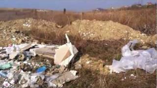 Apocalipsa  Dezastru ecologic la Caldararu Cernica