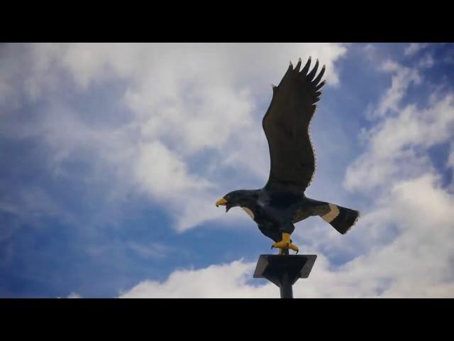 We Are Blackhawks. #FridayNightRivals TV Spot 2018