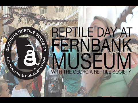 Reptile Day at Fernbank Museum of Natural History with the GRS - Part 1/2 (VLOG & INTERVIEWS)