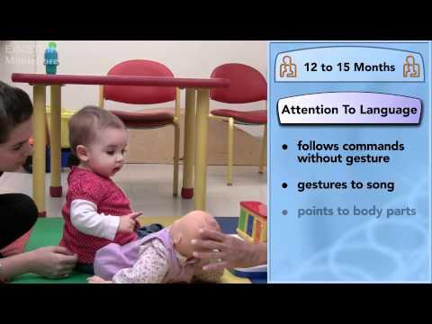 Baby and Toddler Milestones, Dr. Lisa Shulman