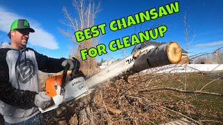 Cleaning up a LARGE TREE MESS