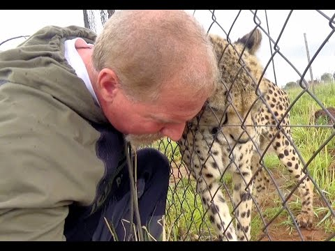 VBlog Documentary 3 Year Friendship With Gabriel The African Cheetah | My Emotional Big Cat Reunion