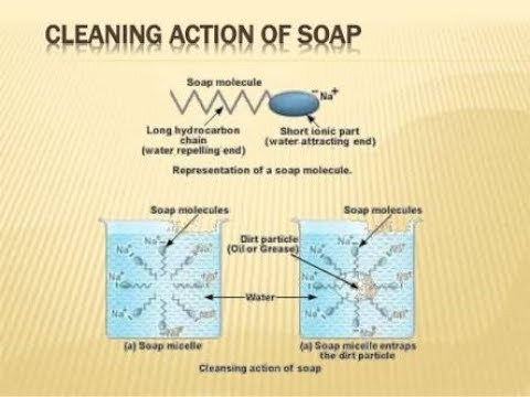 Cleansing Action Of Soap Youtube