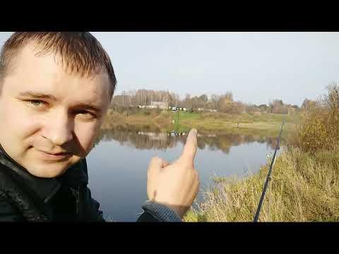 Рыбалка на Западной Двине. Мазурино!