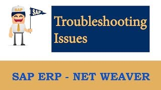 ERP SAP Basis - Net Weaver   SAP Workflow (Troubleshooting issues)  