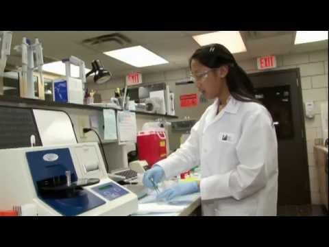 Biochemist - Careers in Science and Engineering