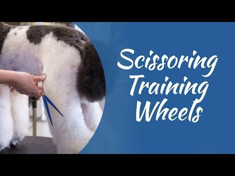 Scissoring Training Wheels