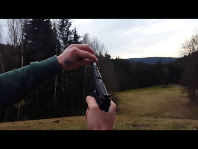 Walther P22 Vogelschreck und Pfeifer/Ratter 4k