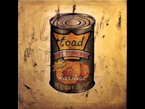 Good Intentions Toad The Wet Sprocket Hq Youtube