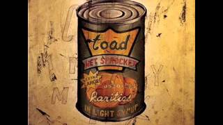 Good Intentions - Toad the Wet Sprocket (HQ)