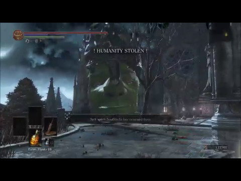 DS3 | A Hack of the Shrek