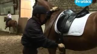 Equitation  - Comment monter à cheval _.mp4