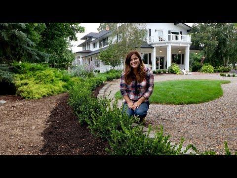 The Mulch I Use + Versailles Update // Garden Answer