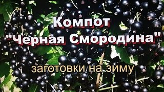 "Компот ""Черная Смородина"" заготовки на зиму! / Juice ""Black Currant"" preparations for the winter!"
