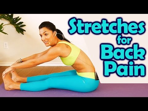 Easy Back Pain Stretches for Beginners, How to Improve Posture & Back Flexibility, Health Tips
