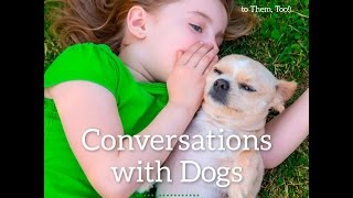 New William Stillman Release Conversations With Dogs Available Now!