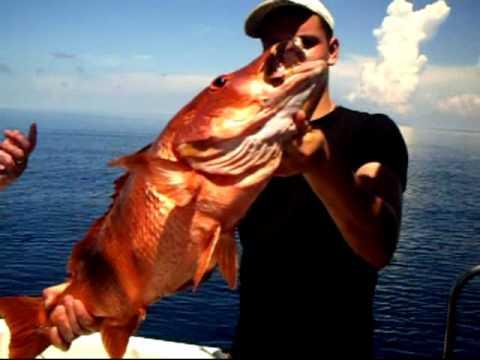 Offshore Jigging Cayo Guillermo Cuba 2015