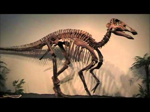 More Duck-billed Dino reference