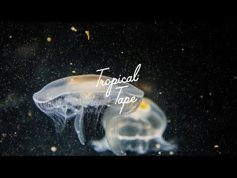 Tim Engelhardt feat. Forrest - Eyes Closed (Tim Green Remix)