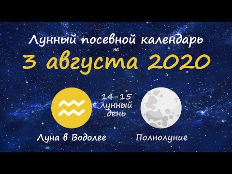 [3 августа 2020] Лунный посевной календарь огородника-садовода