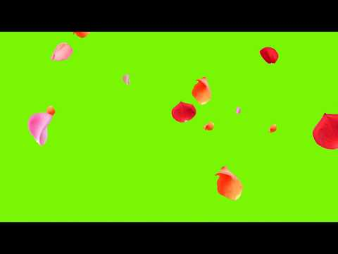 green screen effects flowers thumbnail