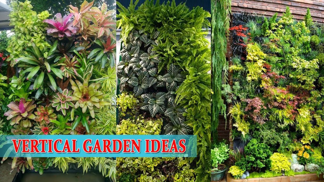 Wall Garden Vertical Garden Ideas Youtube