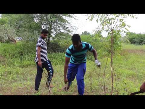 VERI  tamil short film bY YOGESH KUMAR