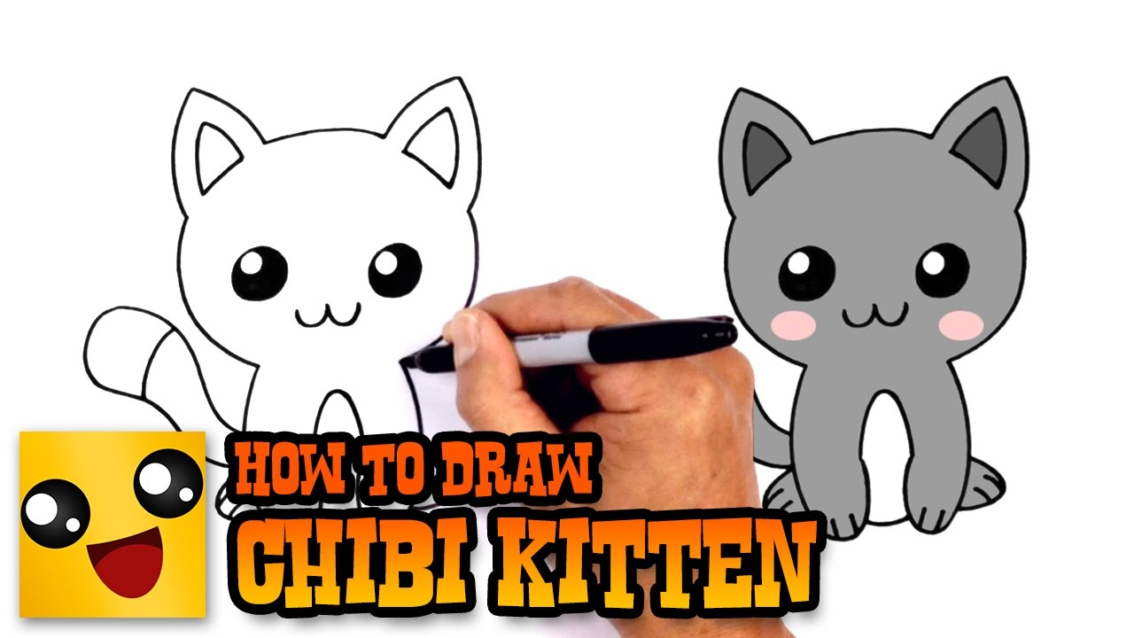 how to draw a kitten drawing lesson