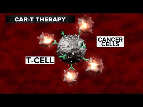 Food and drug administration Panel OKs What May Soon Be First Gene Therapy Approved in U.S