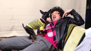 漫画家、小田原ドラゴンの愛犬チョンピーが不審者を撃退しています。