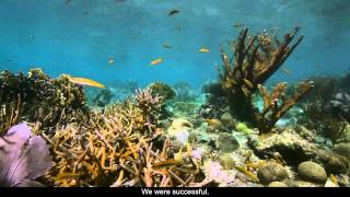 Caribbean Gem: Buck Island Reef National Monument (Film Trailer, 2014)