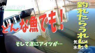 真冬の五三川、津屋川バス釣りのはずがアレがつれたわ!