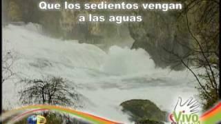 Vengan a las Aguas | musica adventista