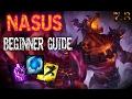 CARRY YOUR TEAM! | NASUS TOP BEGINNER GUIDE (TANK NASUS VS RENEKTON) League of Legends S7.3 - Gidrah