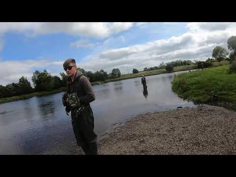 22lb Salmon On The River Forth Stirling July 2020