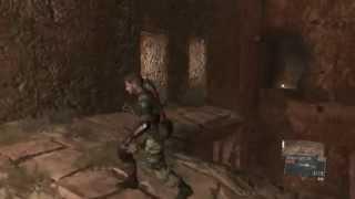 Metal Gear Solid V: The Phantom Pain Honey Bee Location