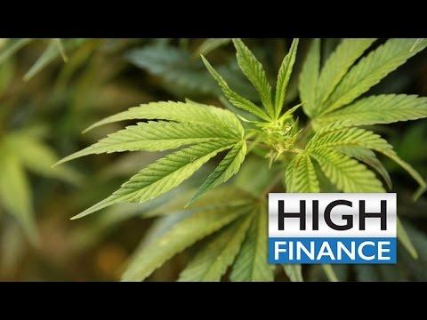 Marijuana News - Sacramento Mayor Supports Cannabis - Hebrew U Invests In Cannabis Technology