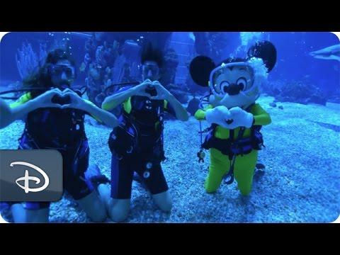 First Dive | Epcot DiveQuest | Walt Disney World