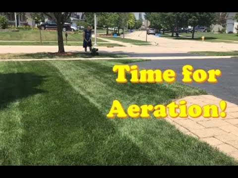 LAWN CARE - Time to Aerate + Overseed and add Ringer Fertilizer!