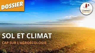 SOL ET CLIMAT - Dossier #6 - L'Esprit Sorcier