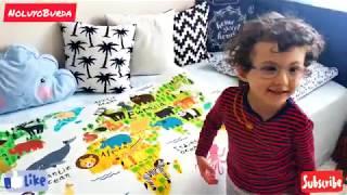 Hayvanlar Alemi Kuzeyin Odasında | Eğlenceli Çocuk Videosu | Animal Kingdom in Childroom