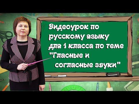 Гласные и согласные буквы и звуки видео урок для 1 класса