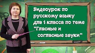 """Видео-урок по русскому языку для 1 класса по теме """"Гласные и согласные звуки"""""""