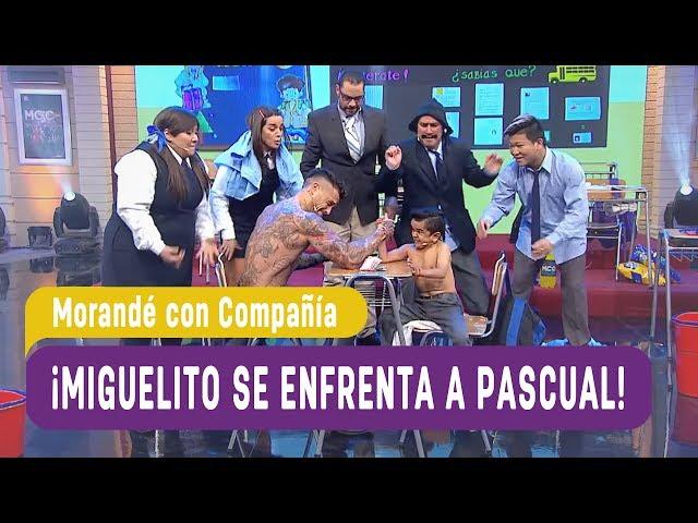 ¡Miguelito se enfrenta a Pascual! - Morandé con Compañía 2017
