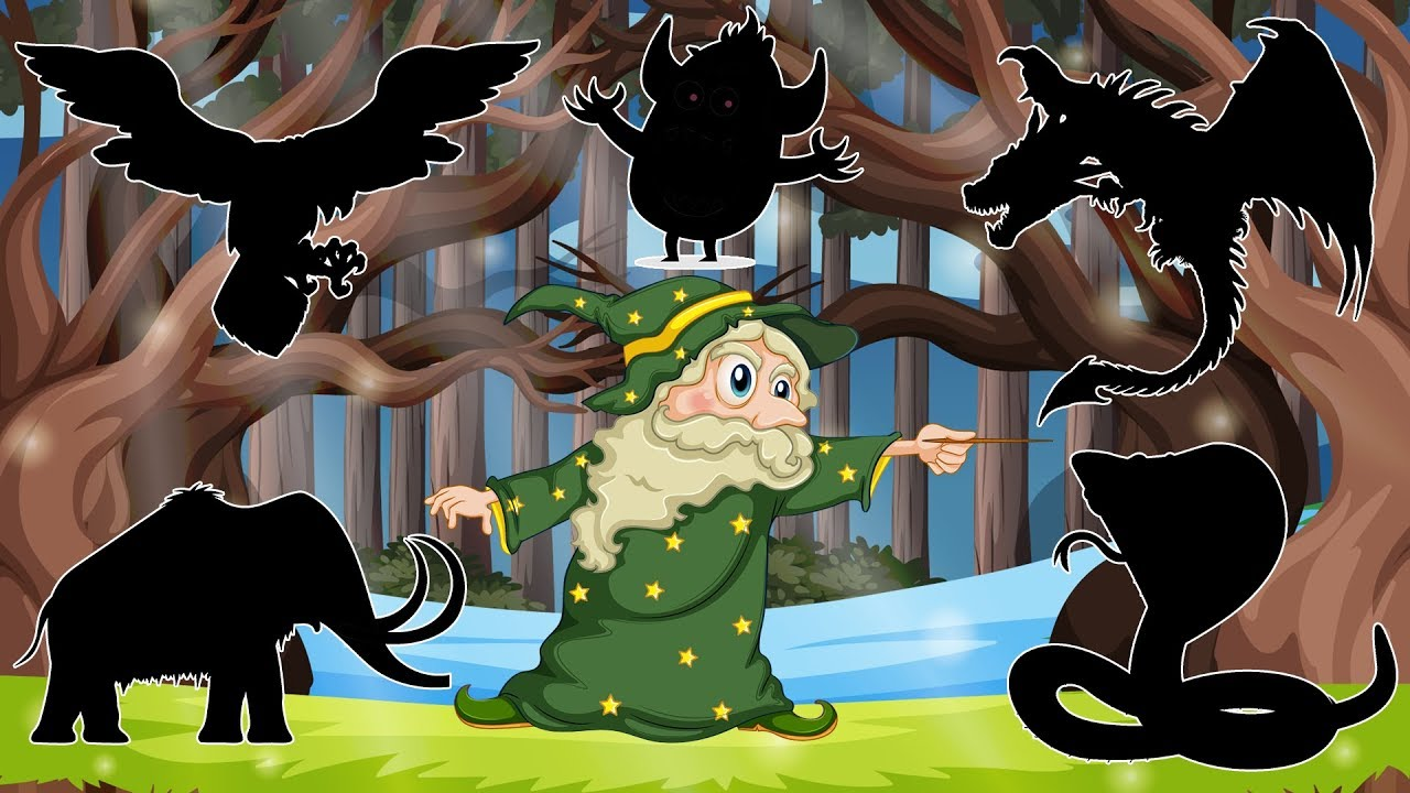 Adventure of witch Viktor Krum   Learn Toy Names For Kids